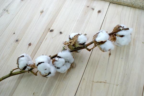 部屋をおしゃれに!マンションで海外インテリア-cottontree1