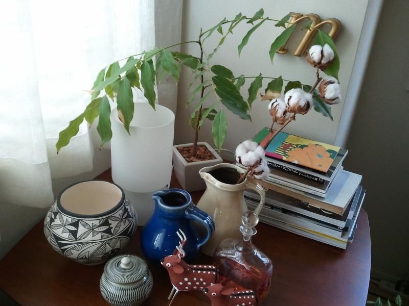 部屋をおしゃれに!マンションで海外インテリア-cottontree2