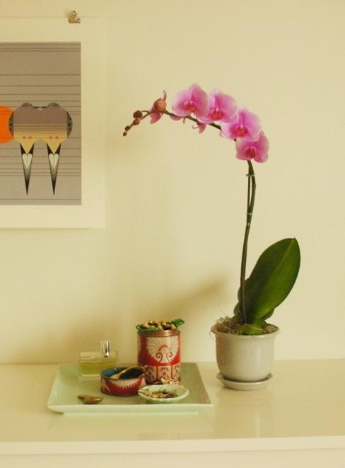 部屋をおしゃれに!マンションで海外インテリア-orchid8